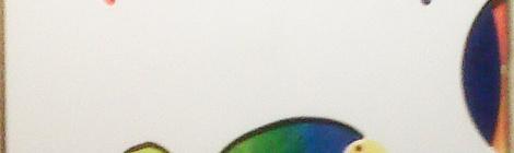 El camaleón Arco Iris